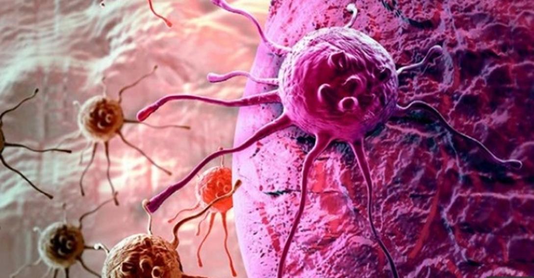 Cremas contra el cáncer. mecanismo de supervivencia del cáncer. cosmeticaonco